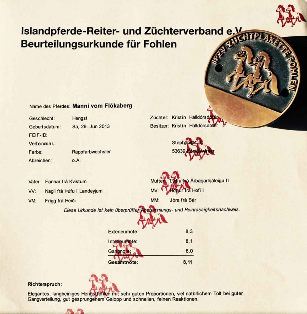 M_Urkunde_Fohlen